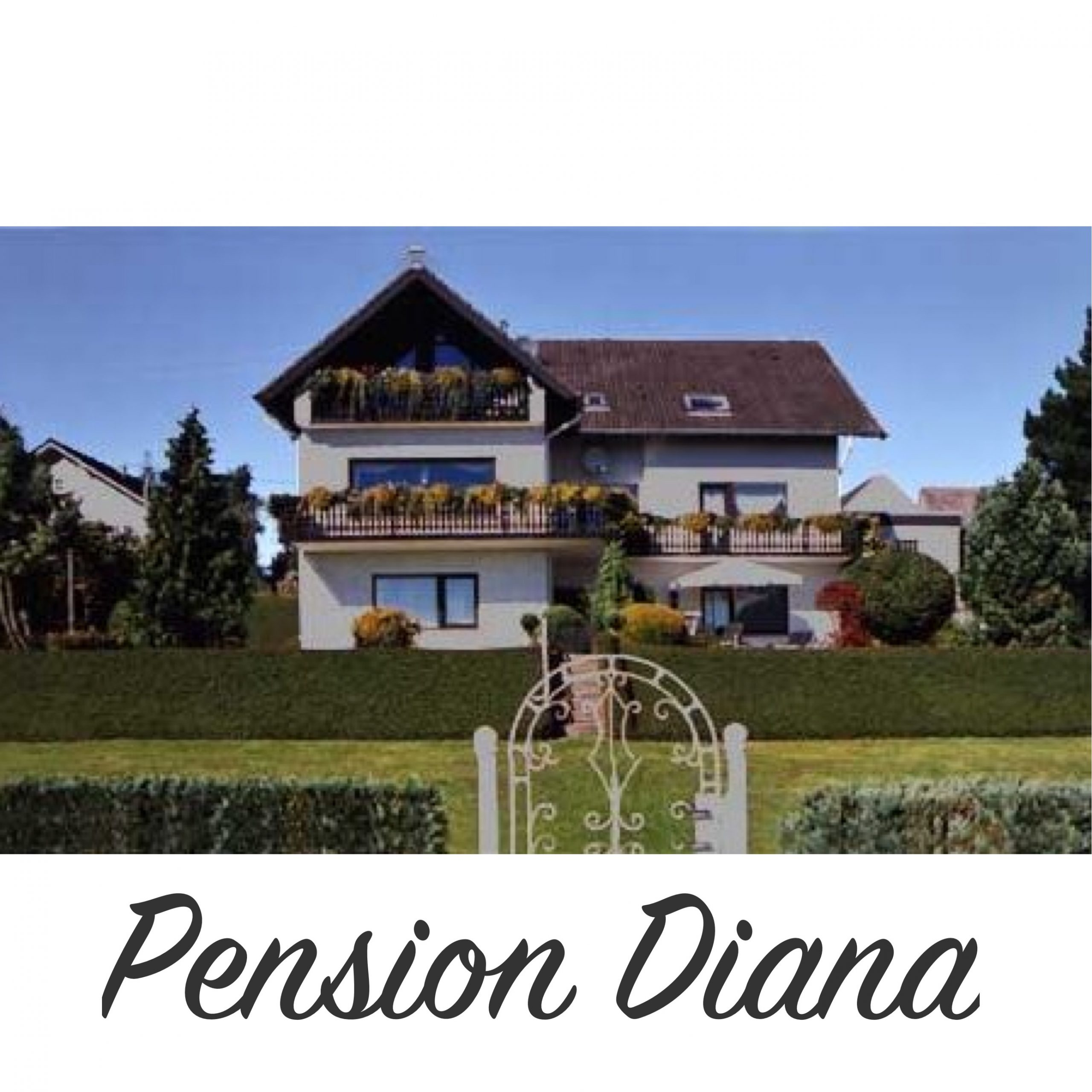 logo pension diana scaled
