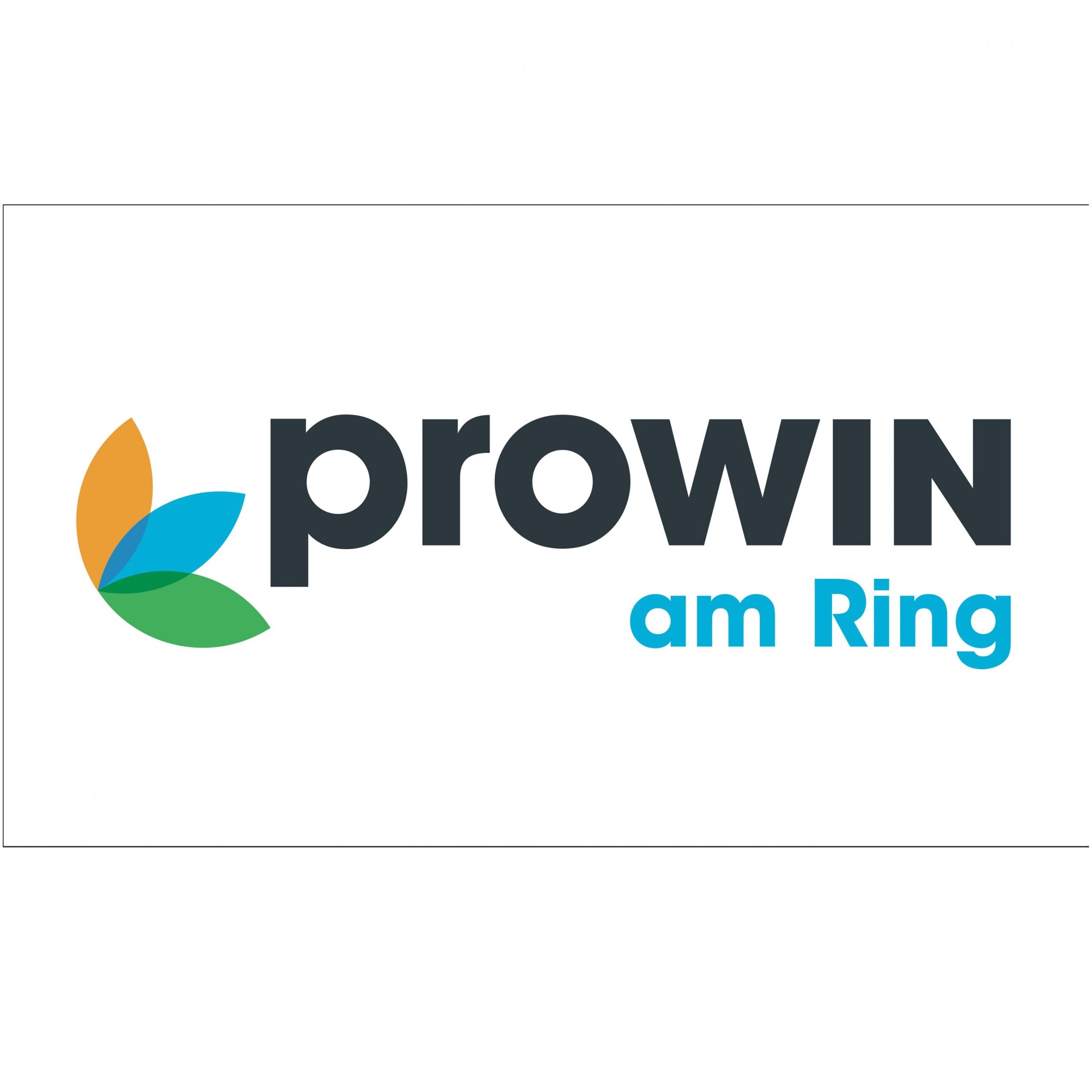 prowin am ring weiss scaled